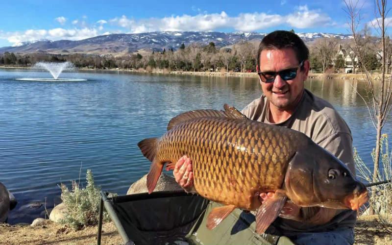 Mơ thấy cá đánh con gì? Giải mã từng tình huống và số tương ứng 12